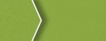 2426 Verde Fun