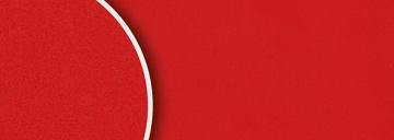 2539 Rosso monza suede