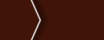 4658 Marron Chocolate