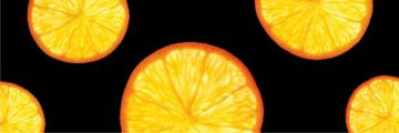 7416 Orange 4