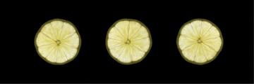 7418 Lemon 1