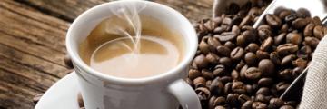 8004 Kaffeetae
