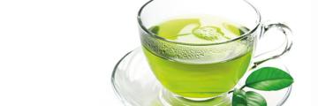 8051 Gruener Tee