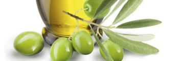 8411 Olive 2
